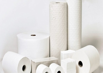 Tissue Manufacturing Industry 2